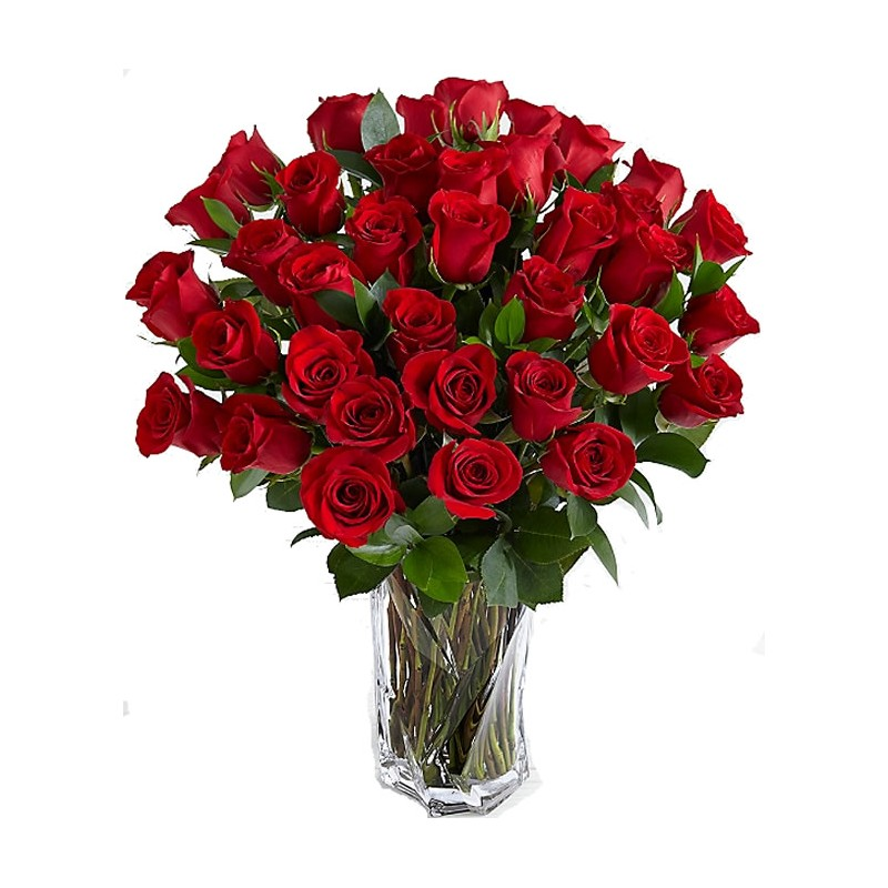 Send red roses in Drama