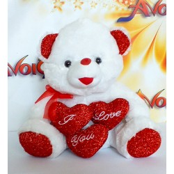 Teddy Bear Present 07