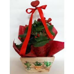 sending flower pots to Drama. drama florists, mother's day florist drama
