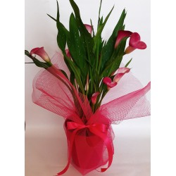 send flowers and plants in drama city. buy flowers online. mother's day